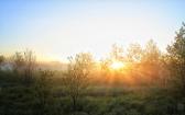 priroda-melenkovskogo-raiona-001