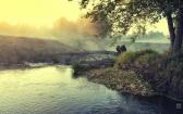 priroda-melenkovskogo-raiona-011