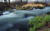 priroda-melenkovskogo-raiona-014