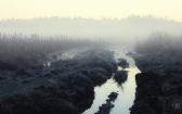 priroda-melenkovskogo-raiona-019