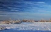 priroda-melenkovskogo-raiona-024