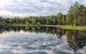 priroda-melenkovskogo-raiona-030