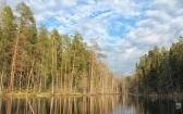 priroda-melenkovskogo-raiona-031