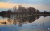 priroda-melenkovskogo-raiona-032