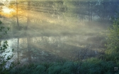 priroda-melenkovskogo-raiona-035