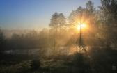priroda-melenkovskogo-raiona-036