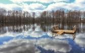 priroda-melenkovskogo-raiona-038