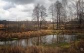 priroda-melenkovskogo-raiona-042