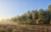 priroda-melenkovskogo-raiona-046