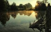 priroda-melenkovskogo-raiona-077