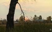 priroda-melenkovskogo-raiona-079