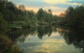 priroda-melenkovskogo-raiona-080
