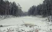 priroda-melenkovskogo-raiona-083