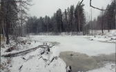 priroda-melenkovskogo-raiona-084
