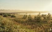 priroda-melenkovskogo-raiona-093