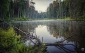 priroda-melenkovskogo-raiona-094