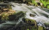 priroda-melenkovskogo-raiona-096