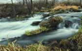 priroda-melenkovskogo-raiona-105