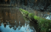 priroda-melenkovskogo-raiona-106