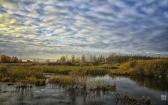 priroda-melenkovskogo-raiona-107
