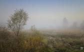 priroda-melenkovskogo-raiona-108