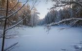 priroda-melenkovskogo-raiona-113