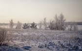 priroda-melenkovskogo-raiona-114