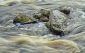priroda-melenkovskogo-raiona-116