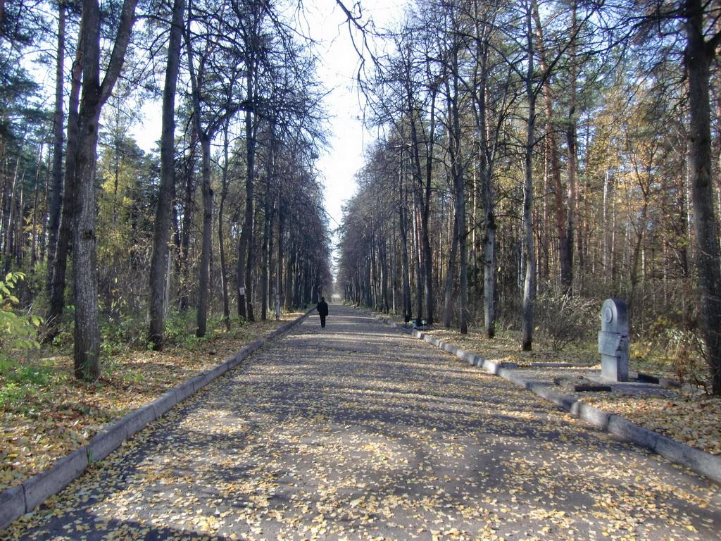 Осень. Аллея Ермакова