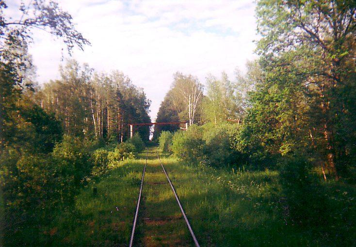 Железнодорожный перегод между Судогдой и Нерудной перед Тюрмеровской