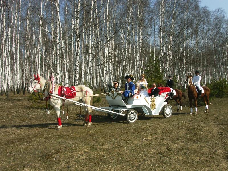 Свадьба. Лошадь и карета в Усадьбе, Дмитриевка