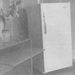Холодильник ОКА-111