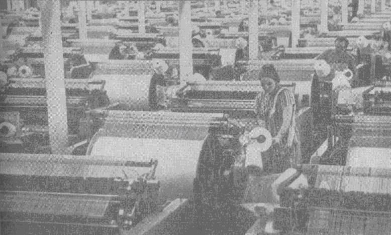 Новинка текстильной техники. Новые бесчелночные станки на фабрике