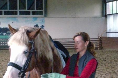 Крытый конный манеж. Киржач