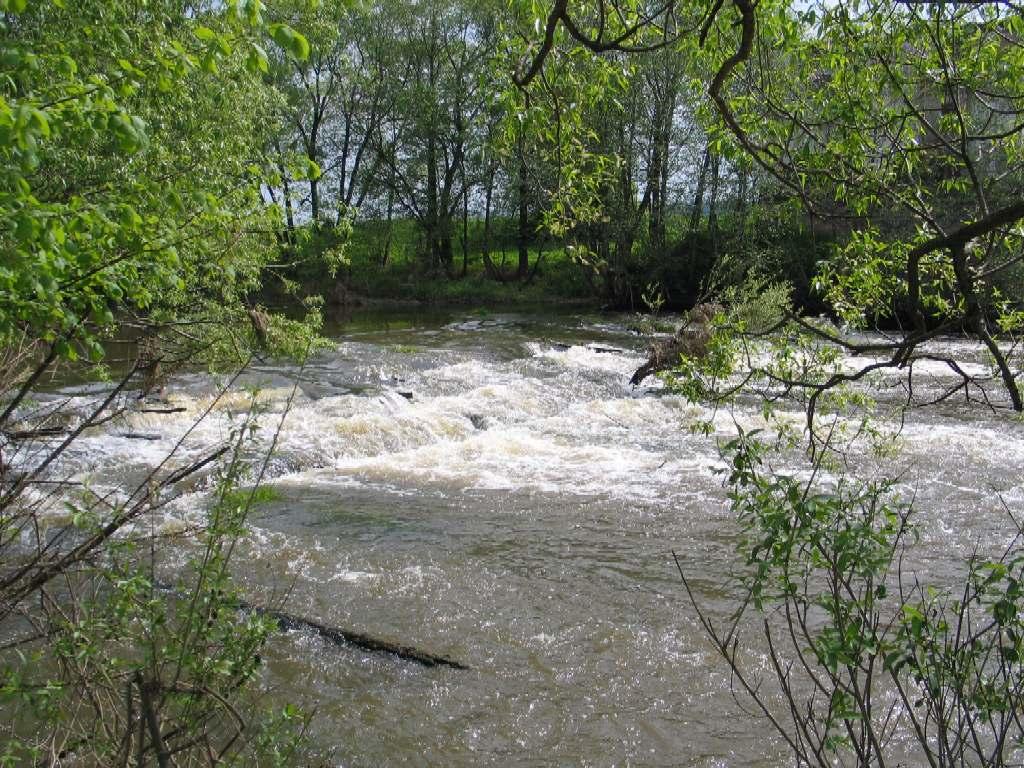 Непосредственно в г. Киржач находится разрушенная плотина. Автор фотографии - http://www.zundercom.narod.ru/