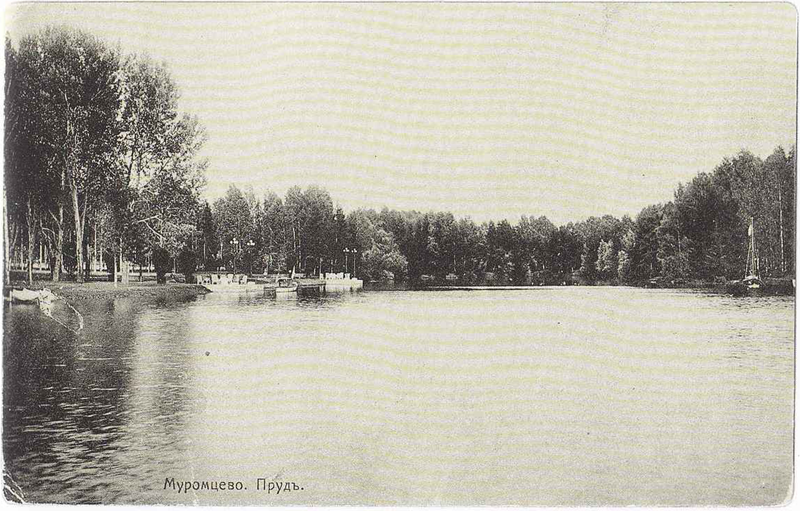 Муромцево - пруд