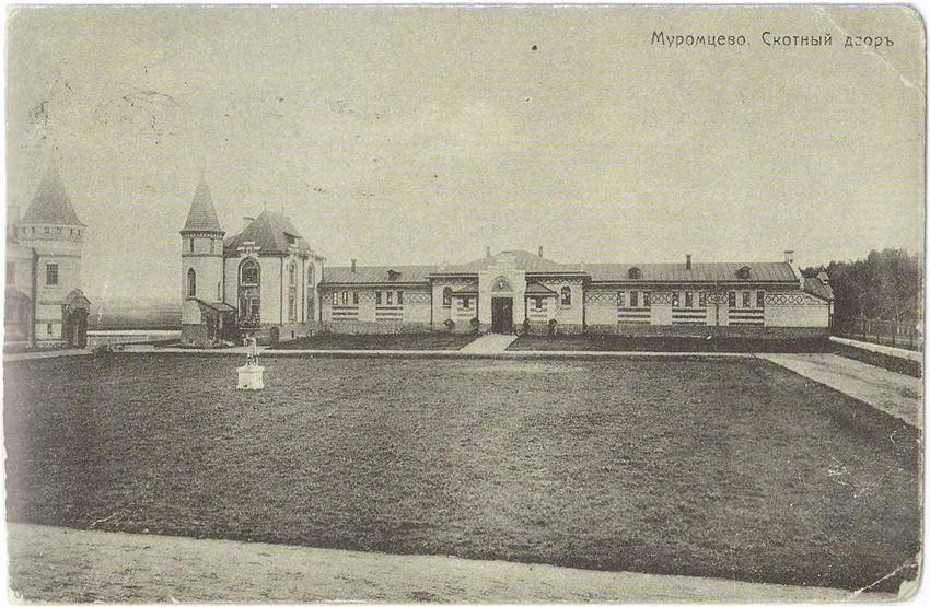 Муромцево - скотный двор. Старая открытка.