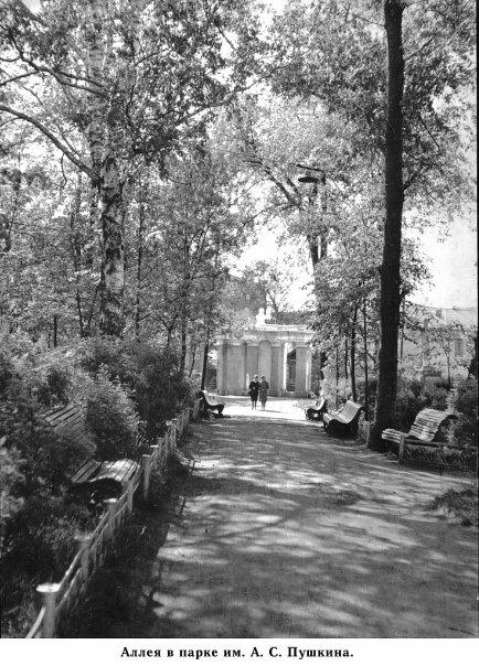 Ковров. Аллея в парке им. А.С. Пушкина