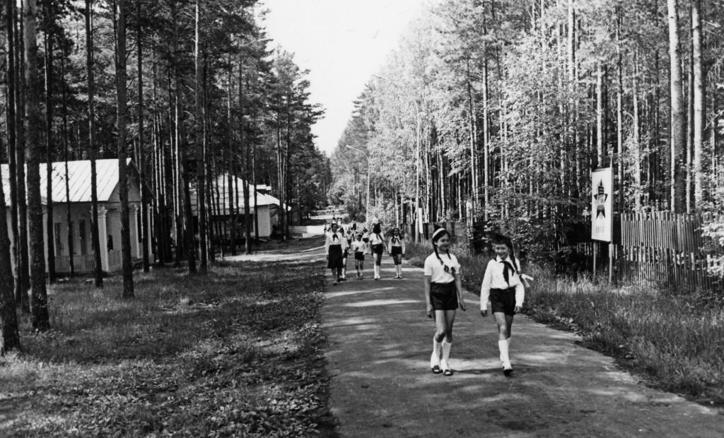 Пионерский лагерь Спутник. Меленковский район