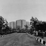 Мост на Вербовском после строительства 03