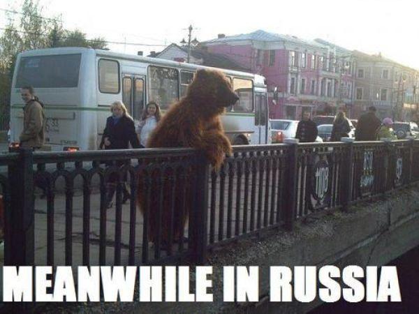 Мемы про Владимир 01