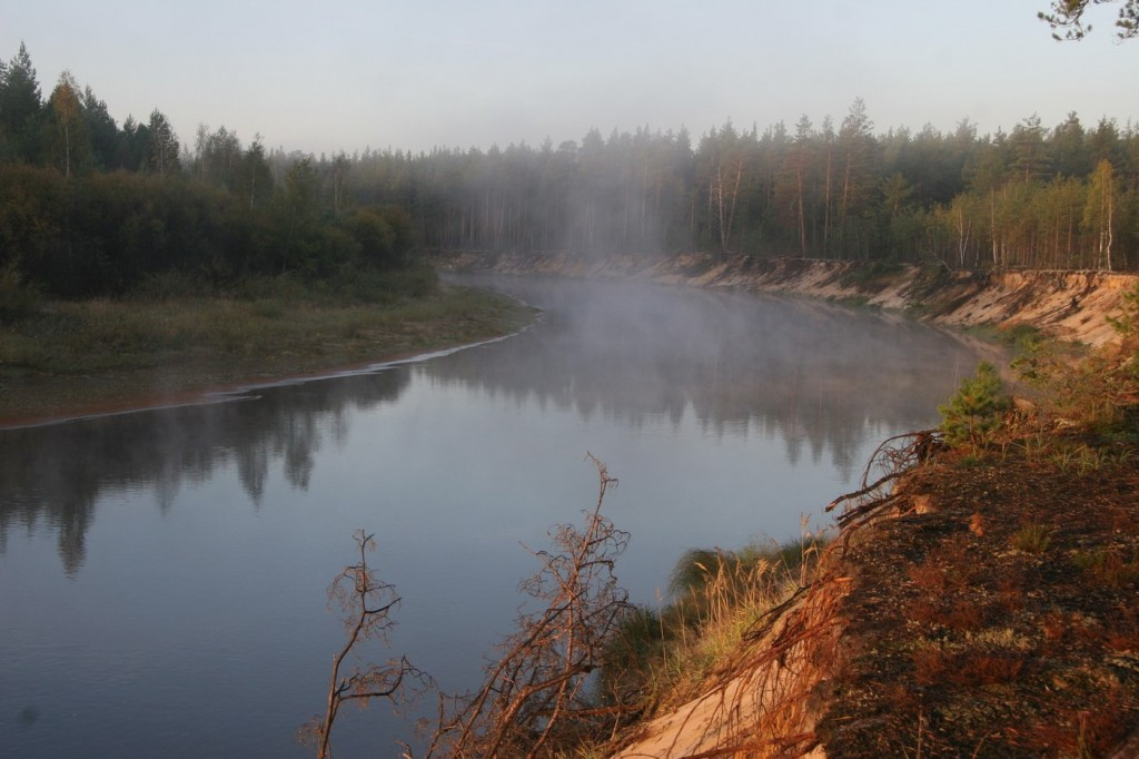 Река Лух. Граница Клязьминско-Лухского заказника