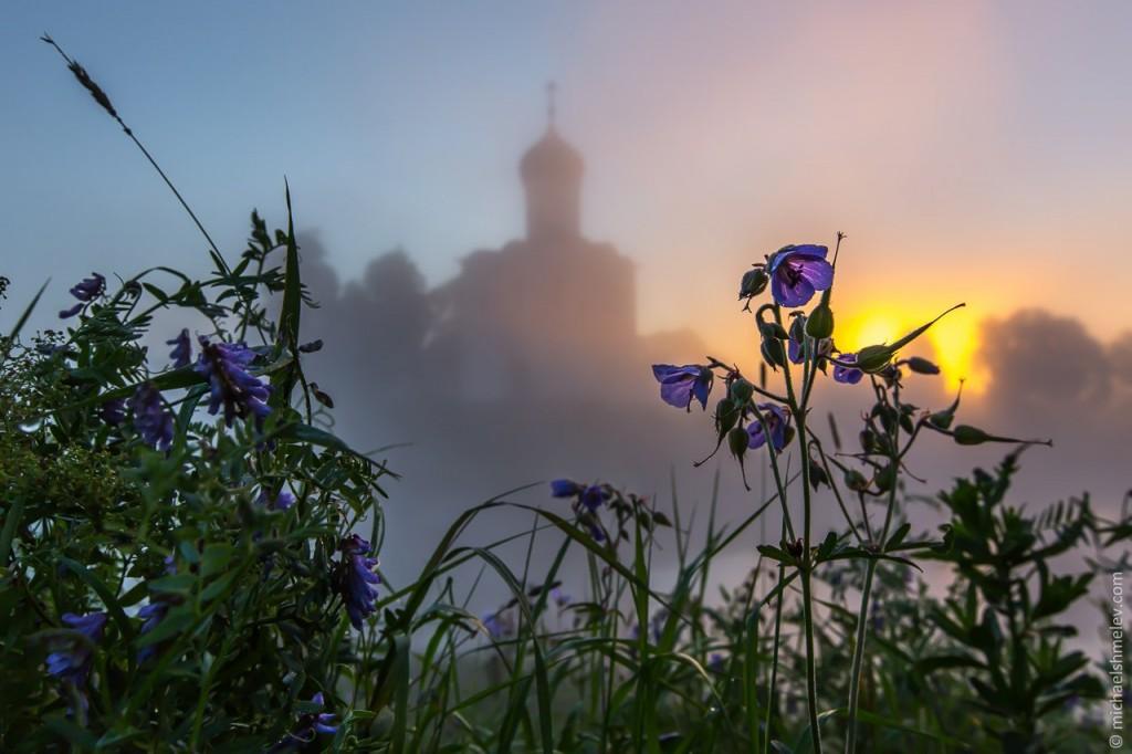 Церковь Покрова на Нерли на закате 05
