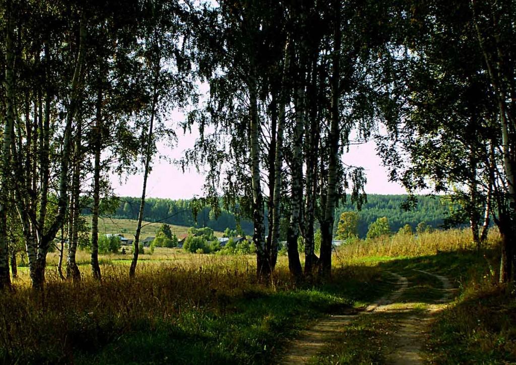 Деревня Медынцево Ковровского района 02