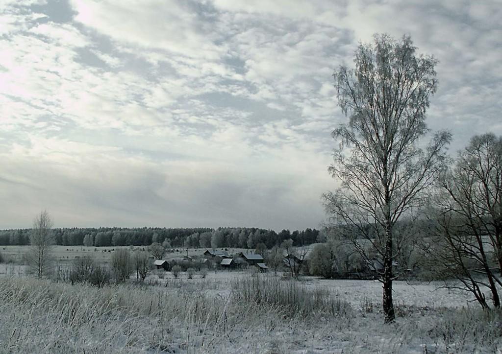Деревня Медынцево Ковровского района 08