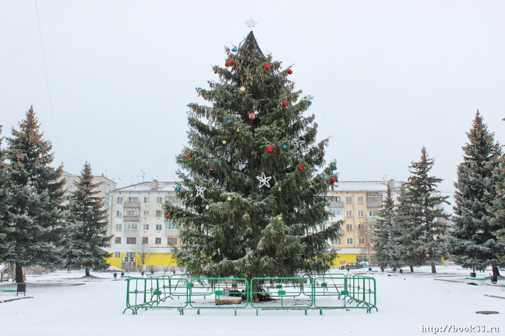 Снежный Вербовский 01