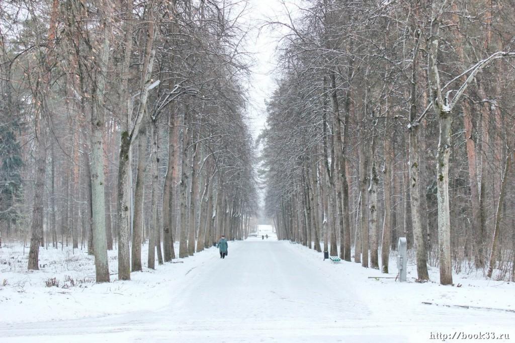 Снежный Вербовский 03