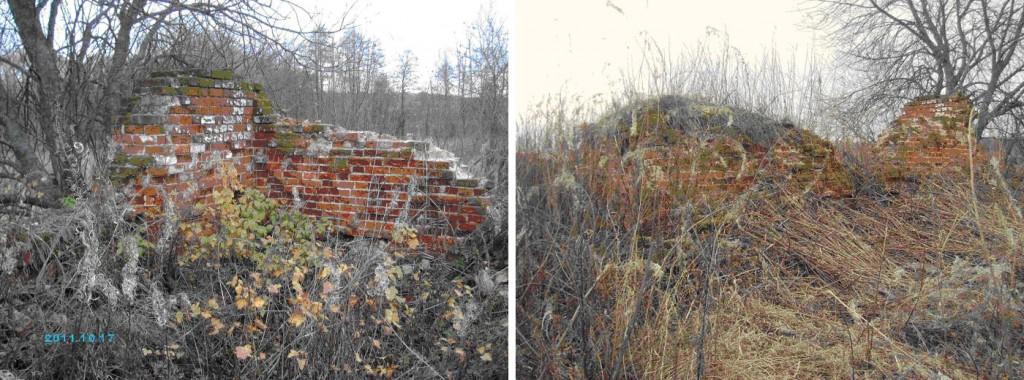 Все что осталось от деревни Дарьино. Фото 2014 года.