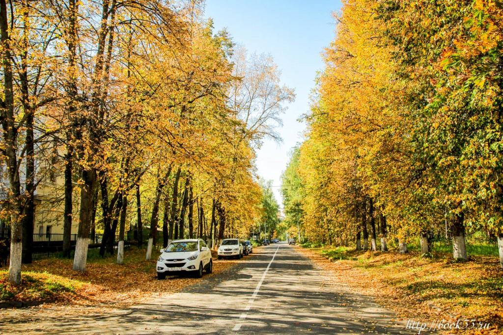 7653 Теплая Осень на Вербовском