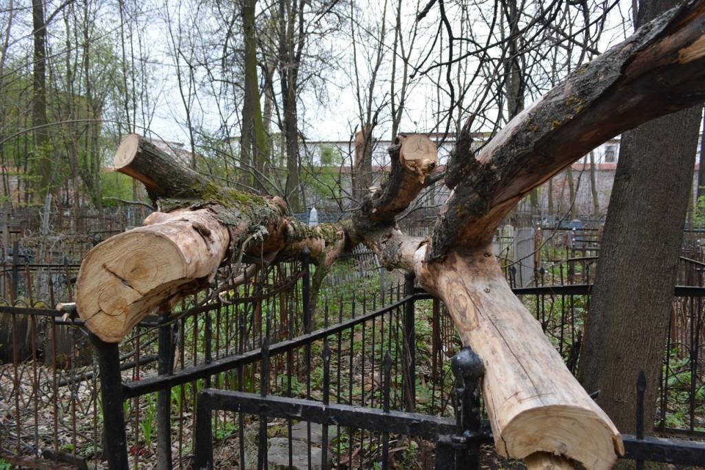 Красота и ужас Князь-Владимирского кладбища 05